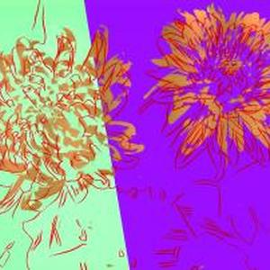 ANDY WARHOL 'FOREVER' - SIMONE D'AURIA 'FREEDOM'