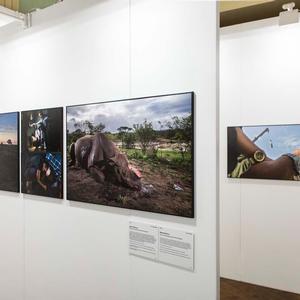 World Press Photo Exhibition 2017