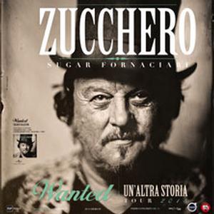 Concerto Zucchero Padova