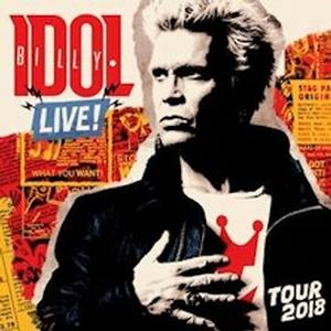 Concerto Billy Idol Padova