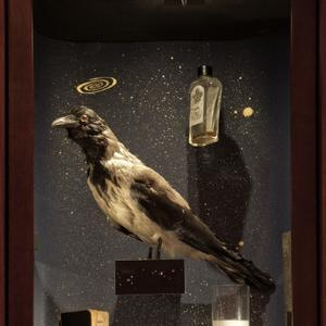 Amore, musei, ispirazione. Il Museo dell'innocenza di Orhan Pamuk