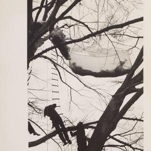 Collecting Matta-Clark. La raccolta Berg: opere, documenti e ephemera