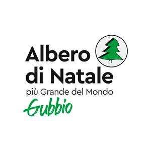 L'albero di Natale di Gubbio 2020